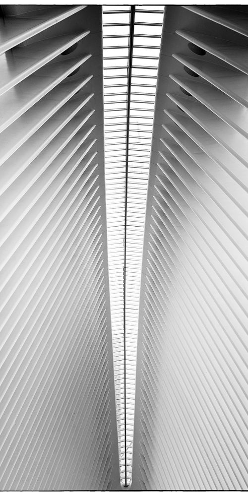 Oculus Structure World Trade Center Abstract Photography