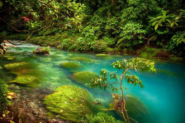 Rio Celeste Costa Rica Landscape Photography